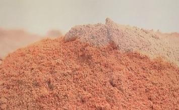 原料の乾燥ミミズ粉末